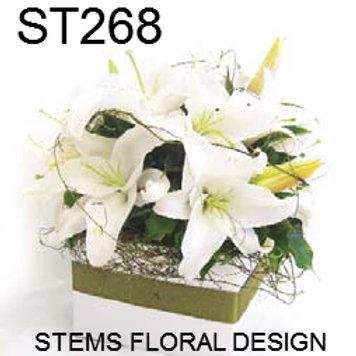 ST268 Box - White Flowers