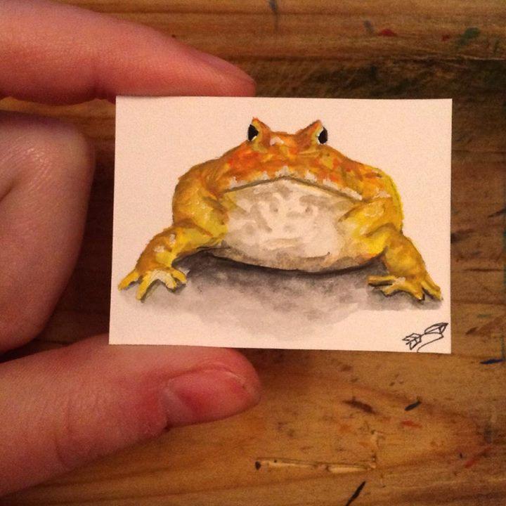 pac man frog