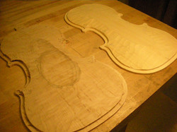 violin plates 1st rough arching