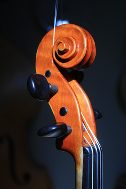 new violin pegbox and scroll