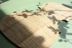 violin maple back final arching