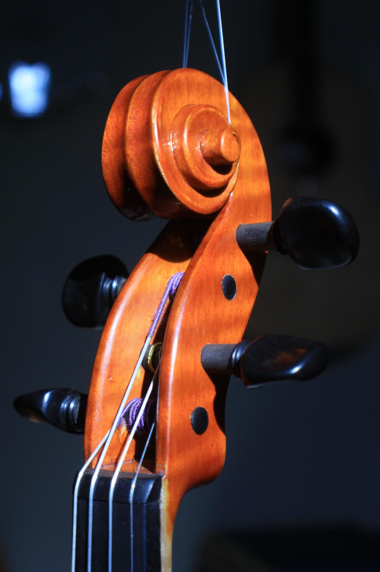 new violin peg box and scroll