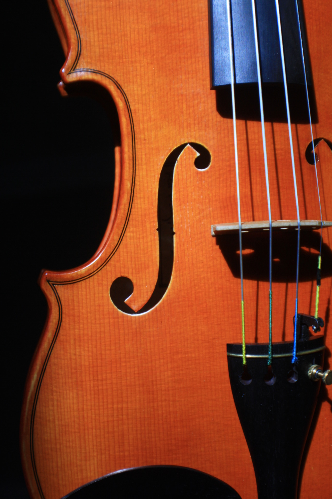 Violin f-holes and bridge