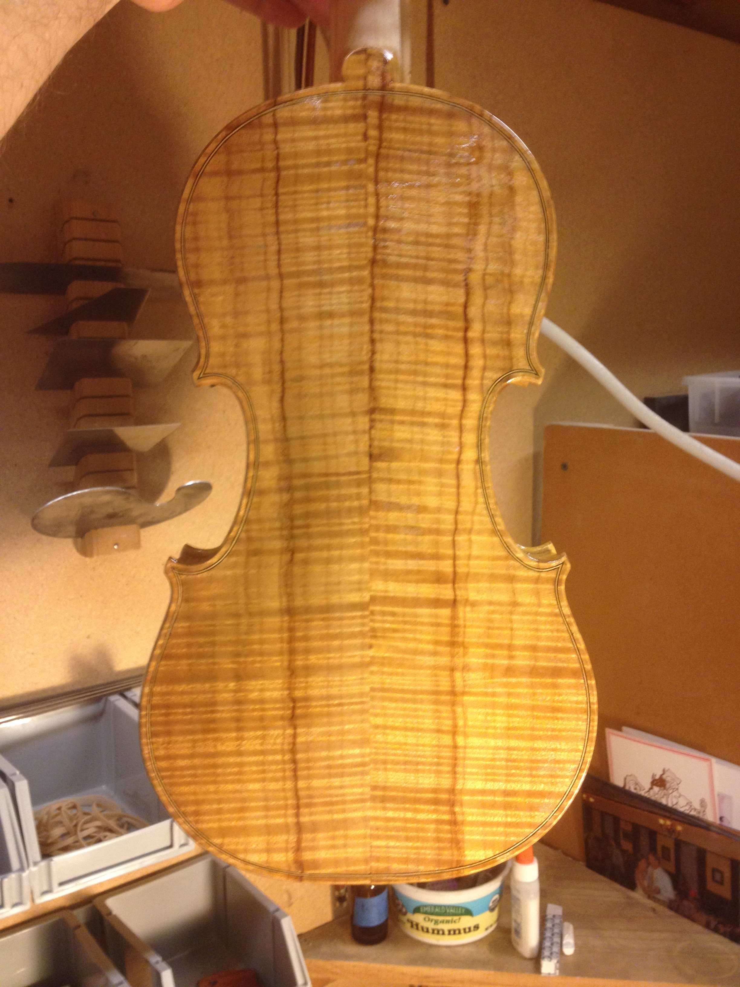 varnishing new maple violin back