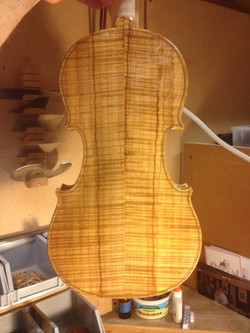 varnishing new maple violin back