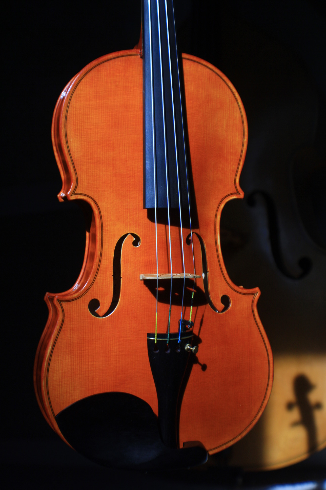 new violin front