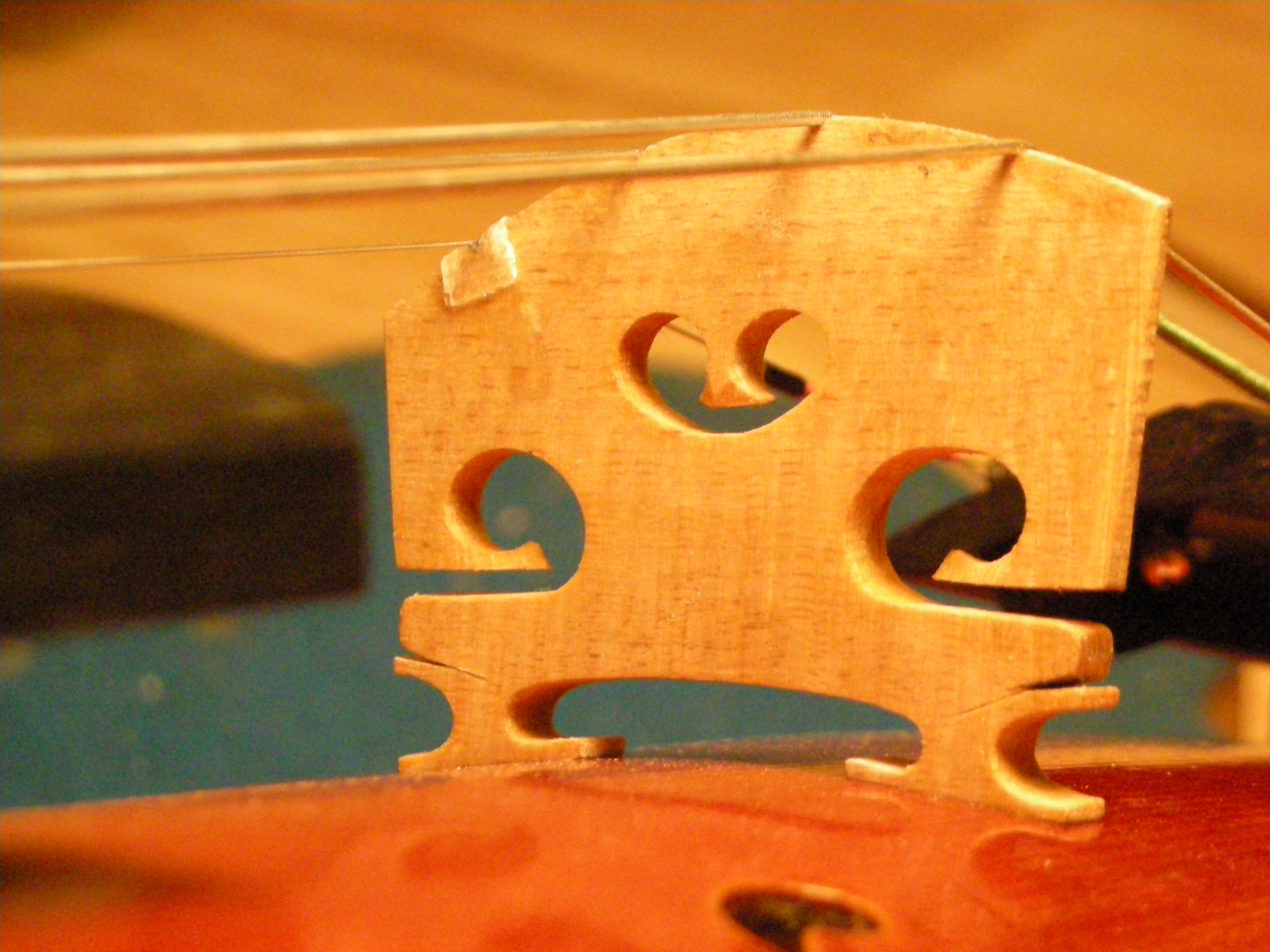 close up violin bridge