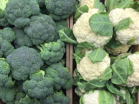 Broccoli Storage Tips