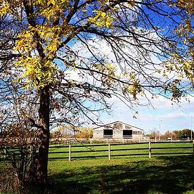 Barn - Arena View.jpg