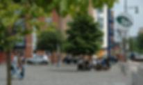 zion sq summer trees.jpg