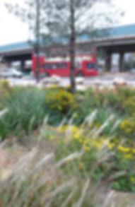 P1420039adj-2 copy.jpg