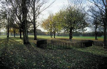 Fencing on lawn2.jpg