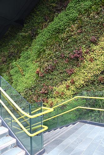 3Q-Greenwall steps-01.jpg