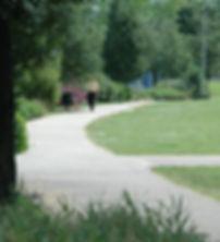 hulme dog walker crop.jpg