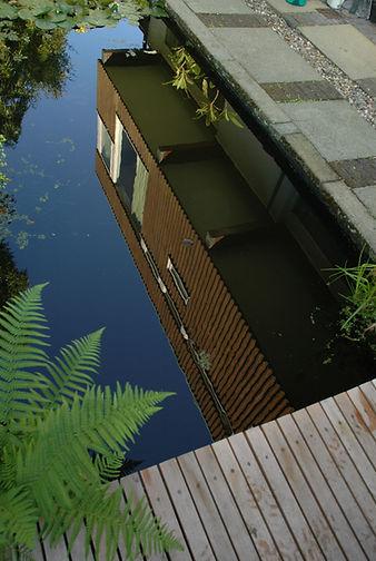 reflect pool.JPG