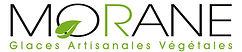 Nouveau logo Morane  copie.jpeg
