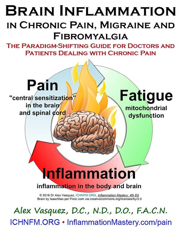 pain migraine fibromyalgia digital ebook nutrition functional medicine textbook book