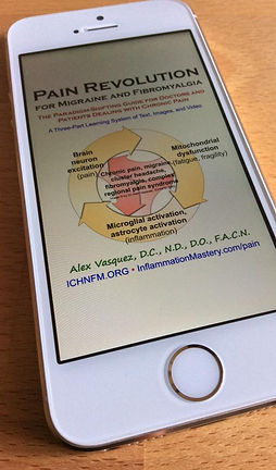 pain migraine neuroinflammation fibromyalgia digital ebook nutrition functional medicine textbook book