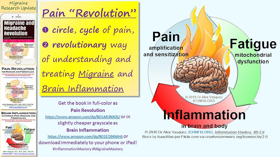 Pain Revolution.png