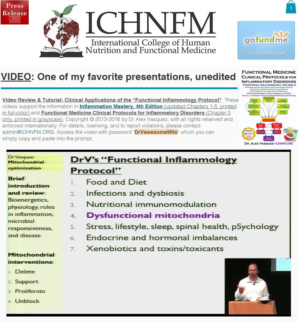 ICHNFM2013mito2