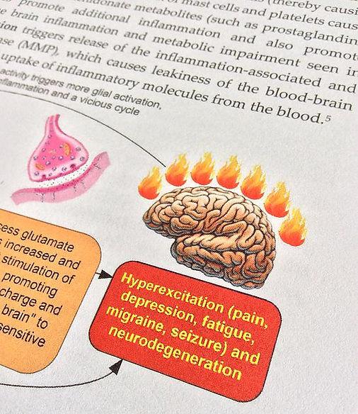 brain inflammation photo from book.jpg
