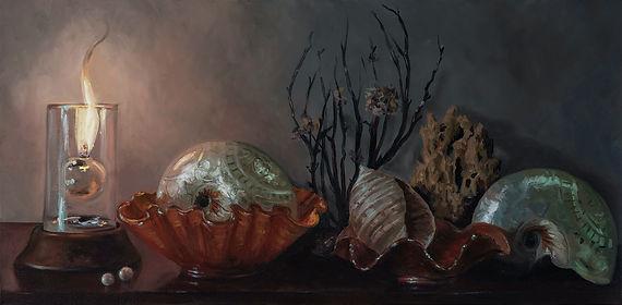 The shell seeker pro.jpg
