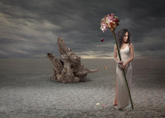 Vanessas flower
