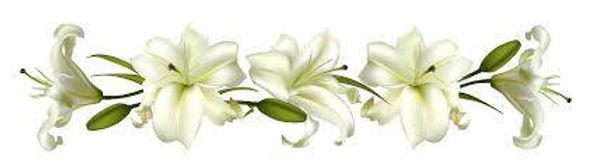 lillies funeral.jpg