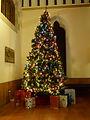 christmastreeicon.jpg