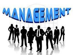 MANAGEMENT website.jpg
