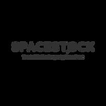 logospacestock.png