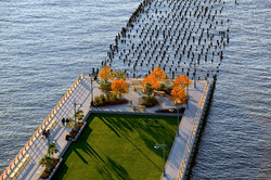 Aerial of Pier 46 Bosque and Synthetic Turf_Area