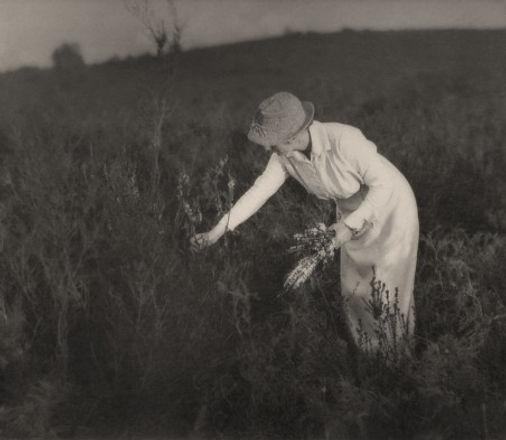 eaton_john__untitled__woman_picking_flowers___c__1930_.jpg