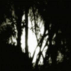 200611j.jpg