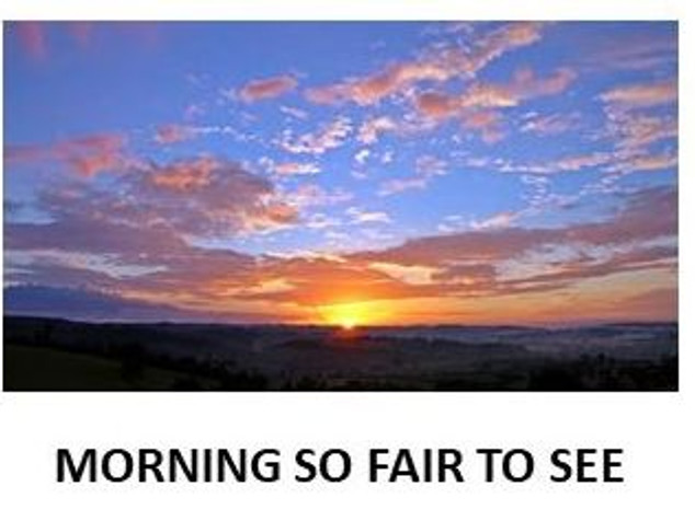 AVC-Morning so fair.mp4