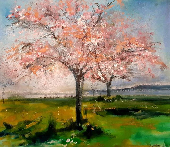 """""""Transient beauty, pink blossom Mumbles"""