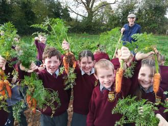 Our Trip to a Vegetable Garden