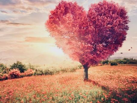 Quintessence, le cinquième élément de l'amour! The fifth elememt of love!
