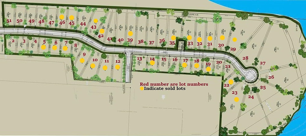lot map W numbers and sold 10-8-20.jpg