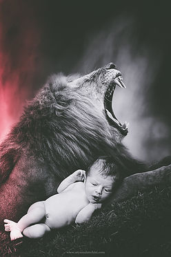 TEST MARLEY LION 2_.jpg