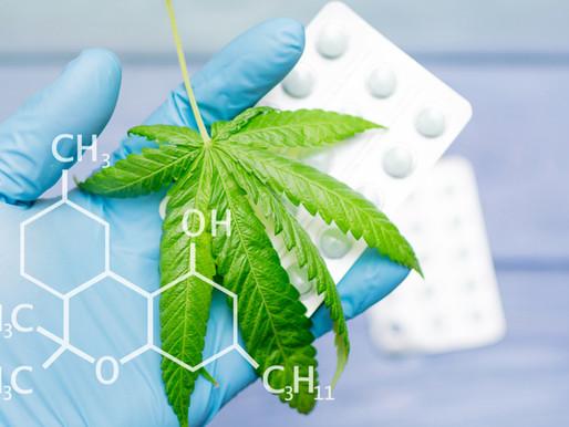 Cannabis | Gateway to Better Health