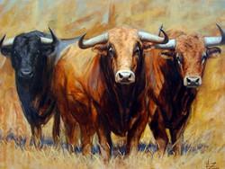 cuadros-al-oleo-de-toros-y-caballos (5)