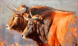 cuadros-al-oleo-de-toros-y-caballos (3)