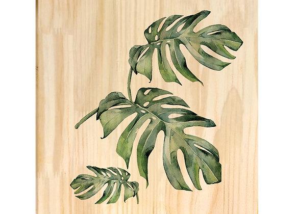 Quadro de Pinus - Monstera