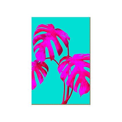 Quadro - Monstera Pink Turquesa - 584