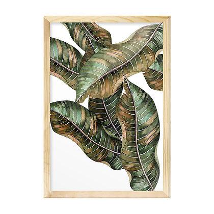 Quadro Moldura Pinus - Folhas ao Vento
