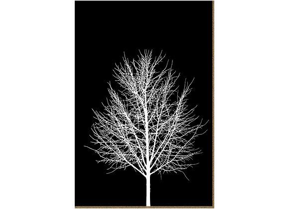 Quadro - Árvore Escuridão - 548