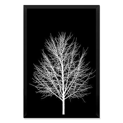 Quadro Árvore Escuridão