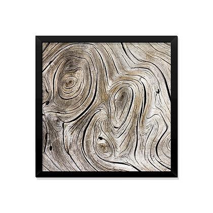 Quadro Textura da Natureza