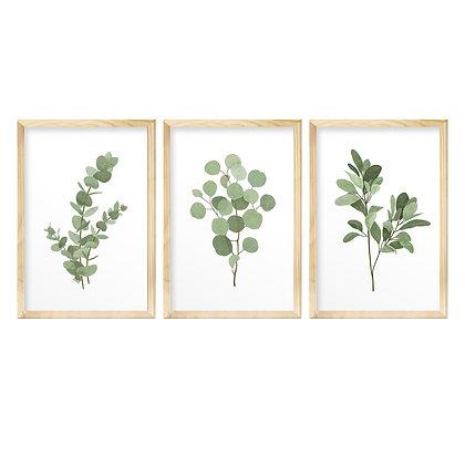 Trio de Quadros Moldura Pinus - Folhagem